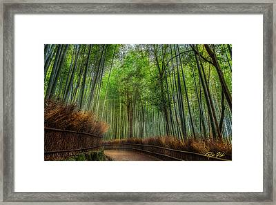 Framed Print featuring the photograph Bamboo Path by Rikk Flohr