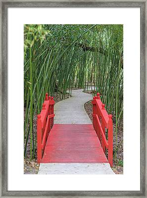 Framed Print featuring the photograph Bamboo Path Through A Red Bridge by Raphael Lopez