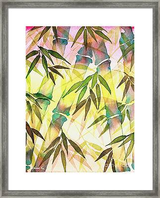 Bamboo Sunrise Framed Print