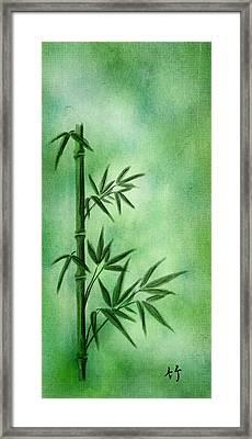 Bamboo Framed Print