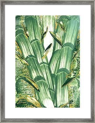 Bamboo Treasure Framed Print by Heather Hennick