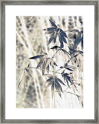 Bamboo Framed Print by Wayne Sherriff