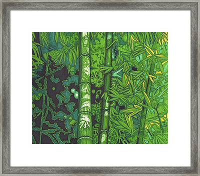 Bamboo Framed Print by Will Stevenson
