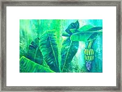 Banan Leaves 5 Framed Print by Carol P Kingsley