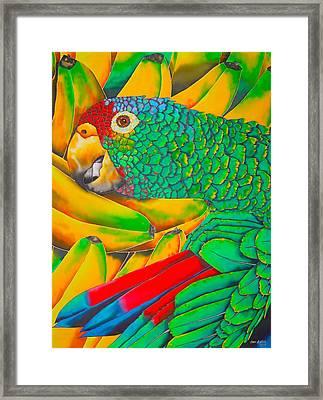 Banana Amazon - Exotic Bird Framed Print by Daniel Jean-Baptiste