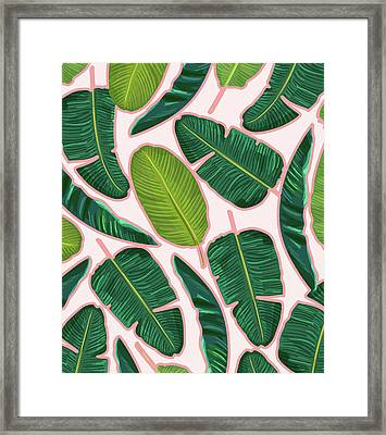 Banana Leaf Blush Framed Print