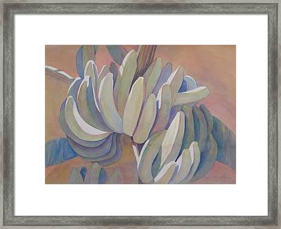Banana Series 26 Framed Print by Carol McDonald