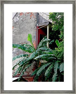 Bananas And Bricks Framed Print
