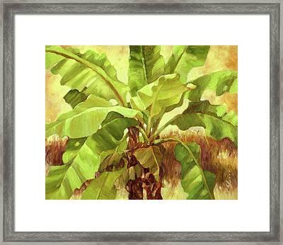 Bananas At Casa Cielo Framed Print by Monica Linville