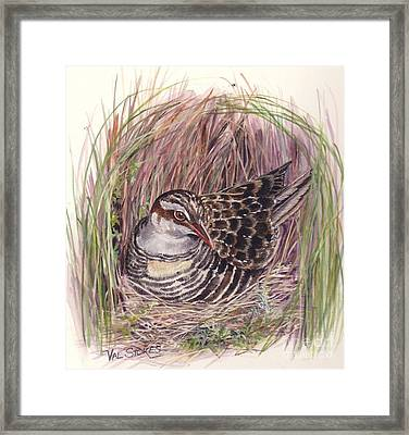 Banded Rail Framed Print by Val Stokes