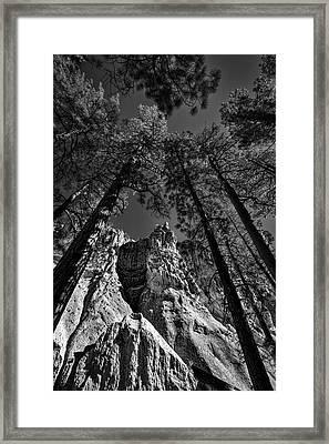 Bandelier Cliffs And Trees #2 Framed Print by Stuart Litoff