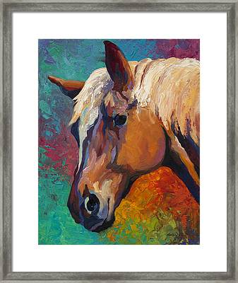 Bandit Framed Print by Marion Rose