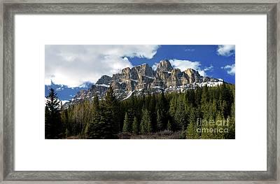Banff - Castle Mountain Framed Print by Terry Elniski