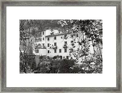 Bangi Di Lucca Framed Print by Andrea Simon