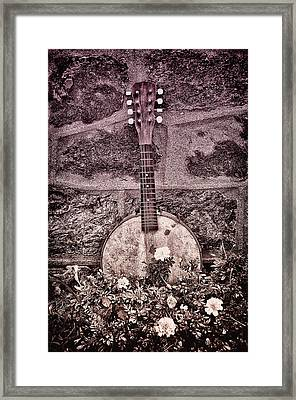 Banjo Mandolin On Garden Wall Framed Print by Bill Cannon