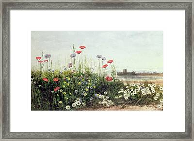 Bank Of Summer Flowers Framed Print by Andrew Nicholl