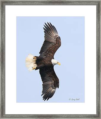 Banking For The Catch Framed Print