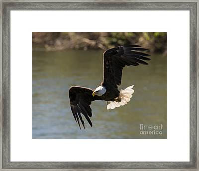 Banking Low Framed Print