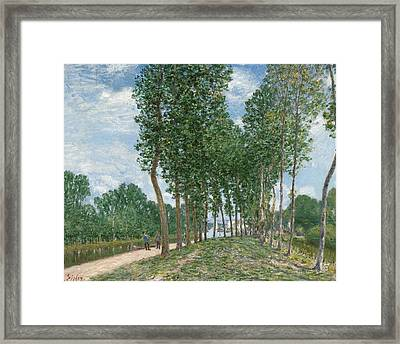Banks Of The Loing At Moret  Framed Print by Alfred Sisley
