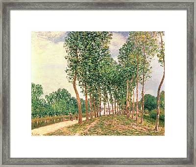 Banks Of The Loing, Near Moret  Framed Print by Alfred Sisley