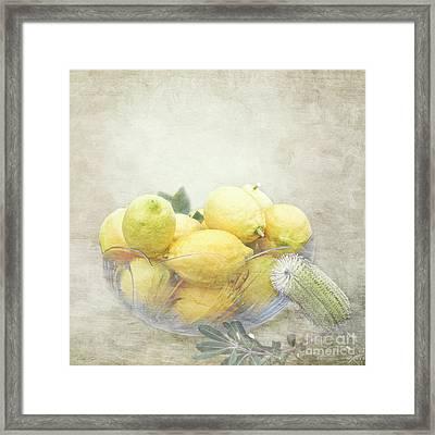 Banksia And Lemons Framed Print by Linda Lees