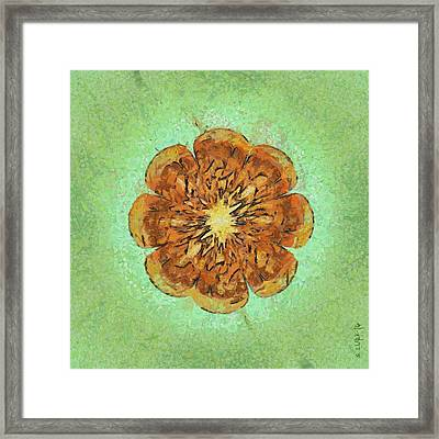 Bannisters Beauty Flowers  Id 16164-021851-17610 Framed Print