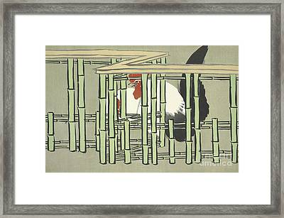 Bantams Framed Print