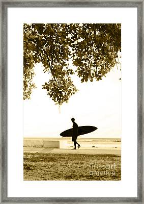 Banyan Surfer - Triptych  Part 3 Of 3 Framed Print by Sean Davey