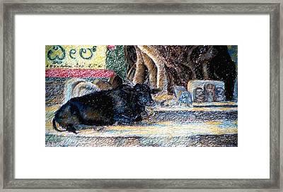 Banyan Tree Bull Framed Print by Claudio  Fiori