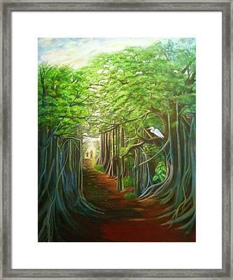 Banyon Walk Framed Print