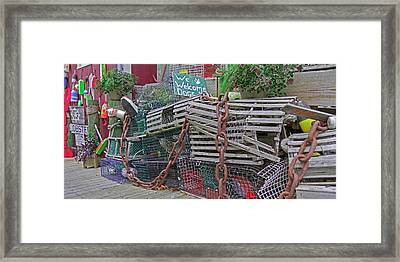 Bar Harbor Where We Love Dogs Framed Print by Betsy Knapp