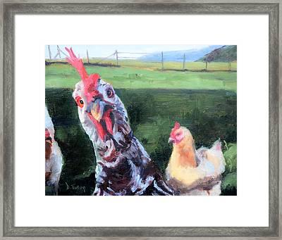 Barbara The Chicken Framed Print