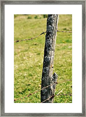 Barbed Fence Post Framed Print by JAMART Photography