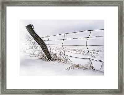 Barbed Wire And Hoar Frost Framed Print