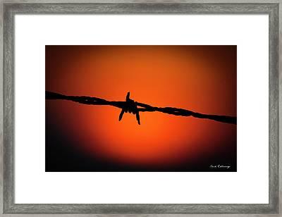 Barbed Wire Art Horse Art Framed Print by Reid Callaway