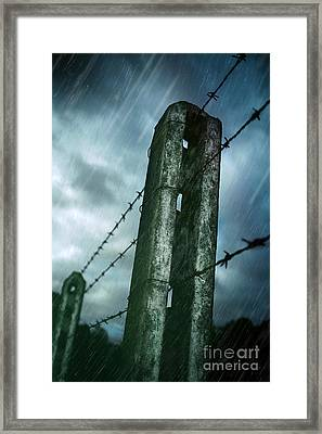 Barbed Wire Fence Framed Print by Carlos Caetano
