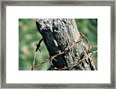Barbed Wire Framed Print by JAMART Photography