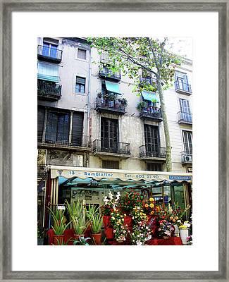 Barcelona Las Ramblas Framed Print by Julie Palencia