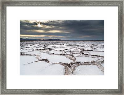 Bare And Boundless Framed Print