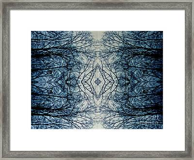 Bare Branch Connection Framed Print