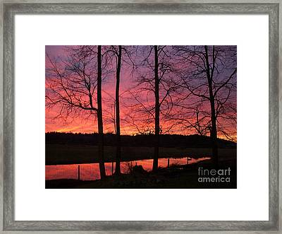 Bare Branches II Framed Print