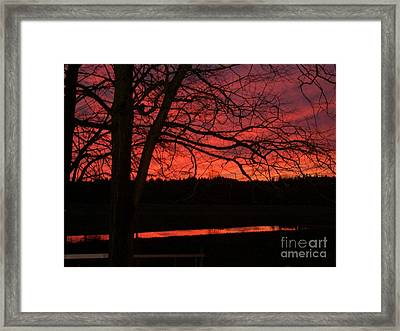 Bare Rnches IIi Framed Print by Cody Williamson