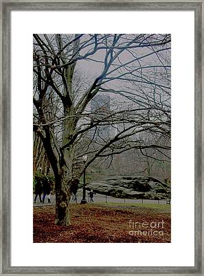 Framed Print featuring the photograph Bare Tree On Walking Path by Sandy Moulder