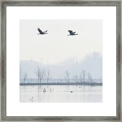 Bare Trees In Lake Framed Print