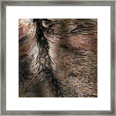 Bark At Woodstream Village Framed Print