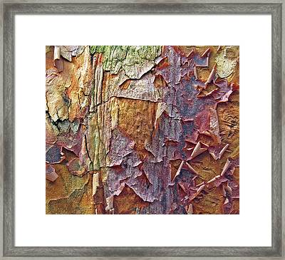 Nature By Design Framed Print by Jessica Jenney