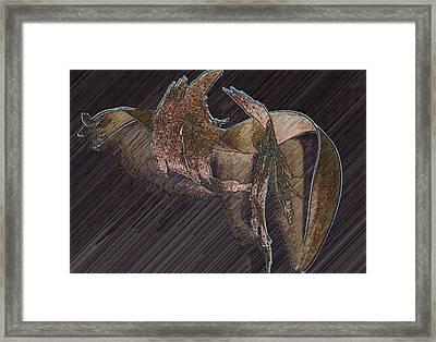 Barkdark Framed Print by Klee Miller