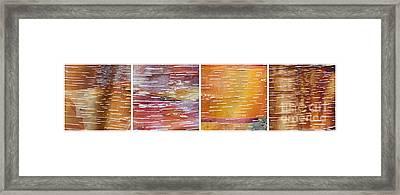Barkerrific Framed Print