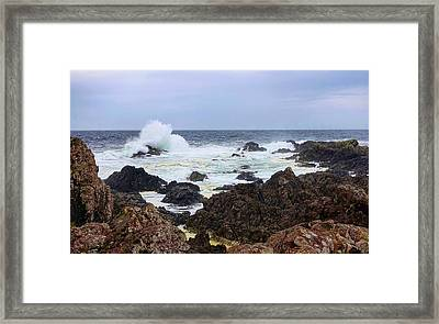 Barkley Sound Framed Print