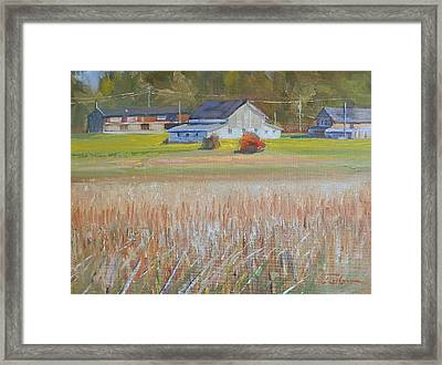 Barn  And Crops Framed Print by Ron Wilson